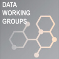 Data Working Groups