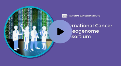 The International Cancer Proteogenome Consortium